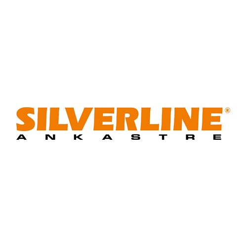 Silverline_Logo-700x106